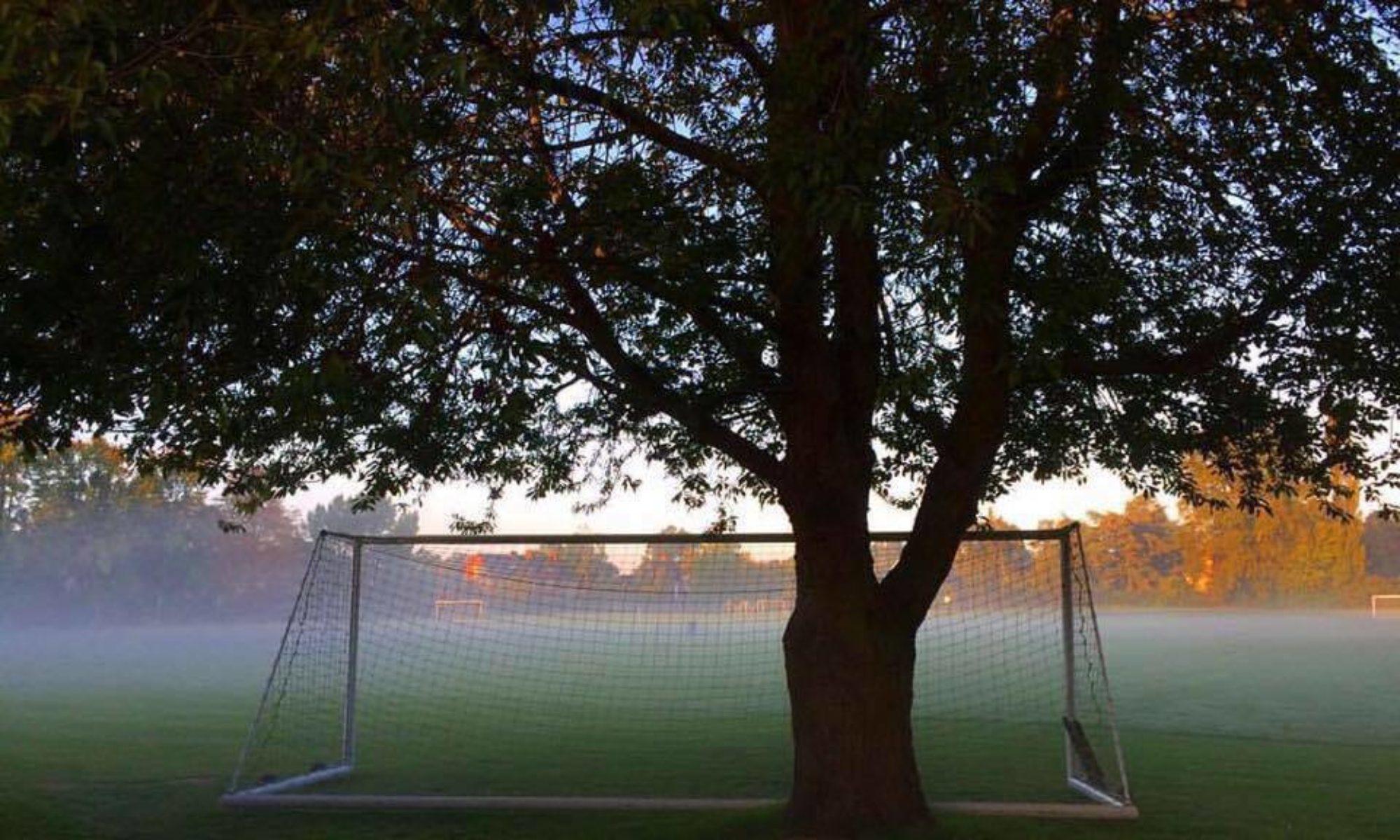 Trinity College Field Club